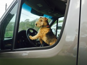 Winston on the road